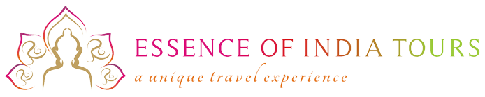 Essence of India Tours